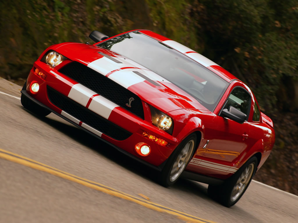 shelby mustang gt500. Black Bedroom Furniture Sets. Home Design Ideas